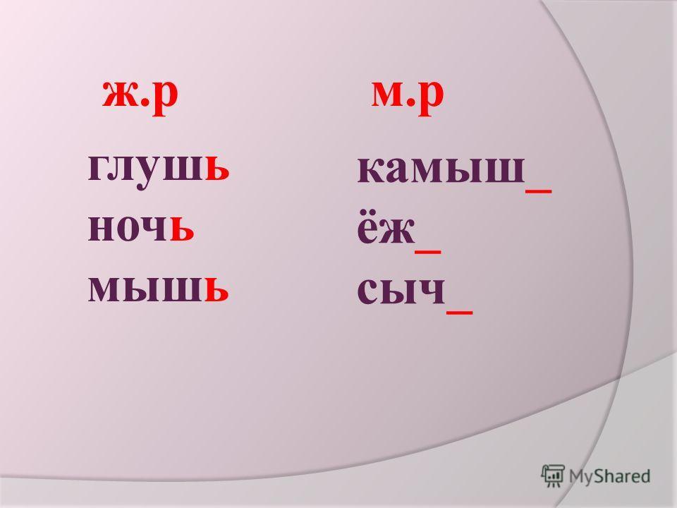 глушь ночь мышь камыш_ ёж_ сыч_ ж.р м.р