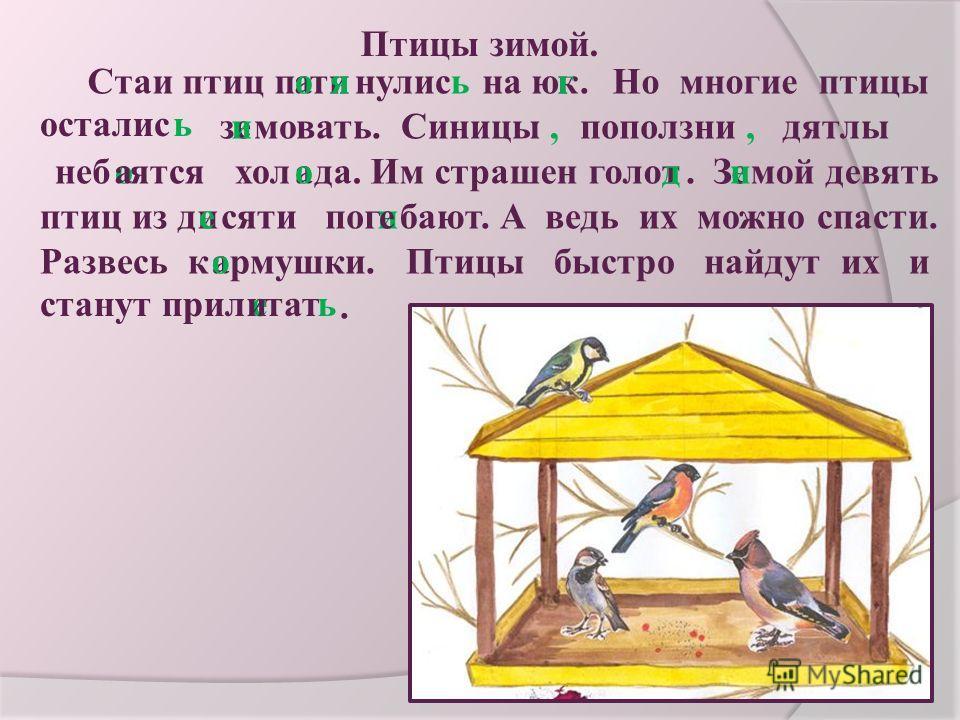 Птицы зимой. Стаи птиц пинулисатоьяна юкг. Но многие птицы остались зеимовать. Синицы,,поползнидятлы небятсяоахолаода. Им страшен голотд.Змой девятьеи птиц из дсяти погиеиебают. А ведь их можно спасти. Развесь кармушки. Птицы быстро найдут их ио стан