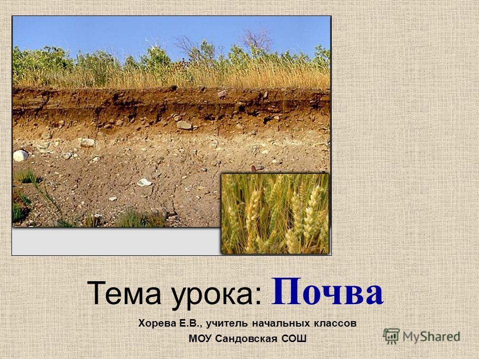 Тема урока: Почва Хорева Е.В., учитель начальных классов МОУ Сандовская СОШ