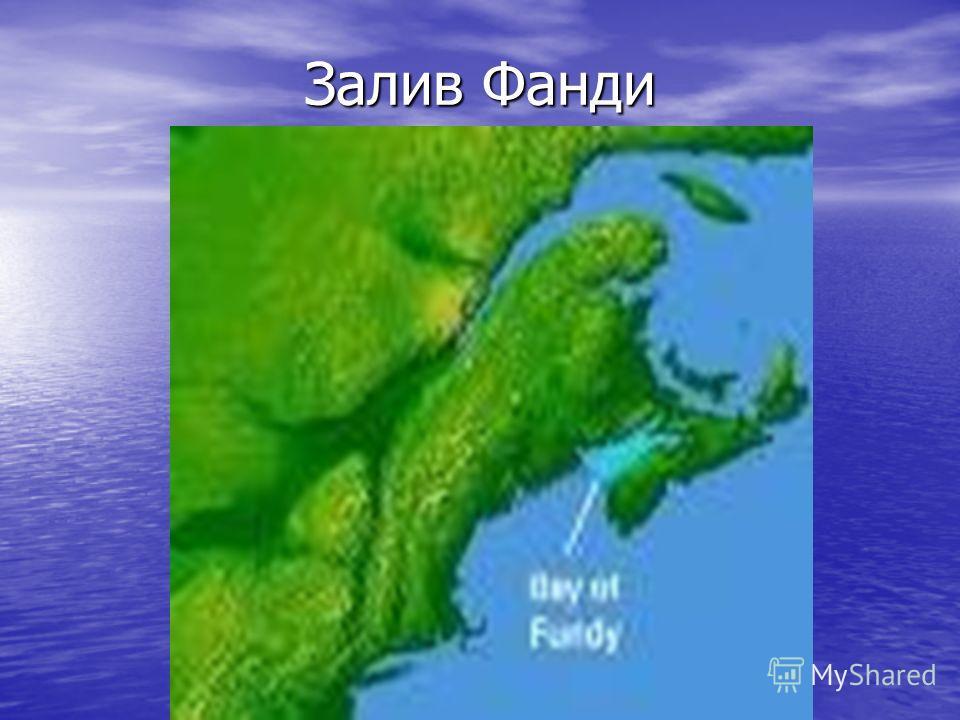 Залив Фанди
