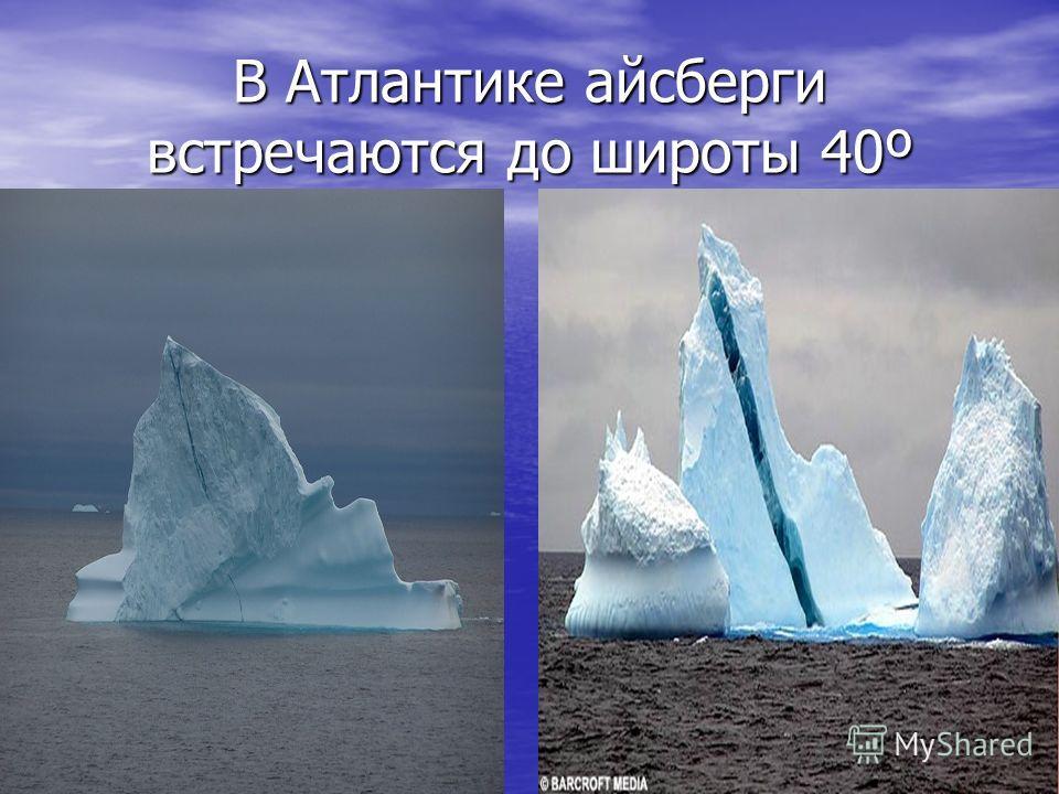 В Атлантике айсберги встречаются до широты 40º