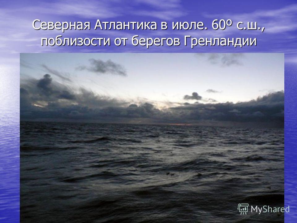 Северная Атлантика в июле. 60º с.ш., поблизости от берегов Гренландии