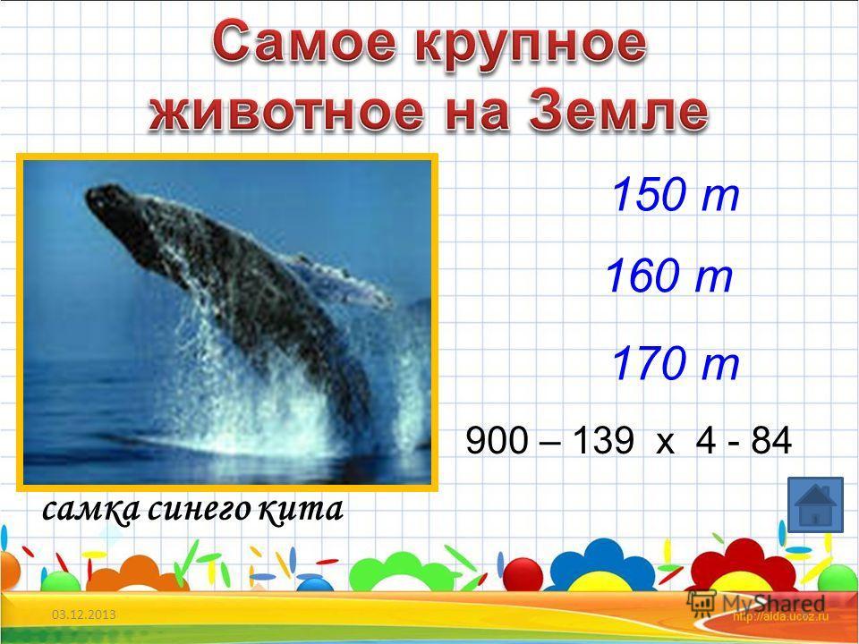 03.12.20134 летучая мышь- шмель 20мм 50мм 60 мин = …..ч 2 сут = …...ч 1800 сек =...мин 30 мм