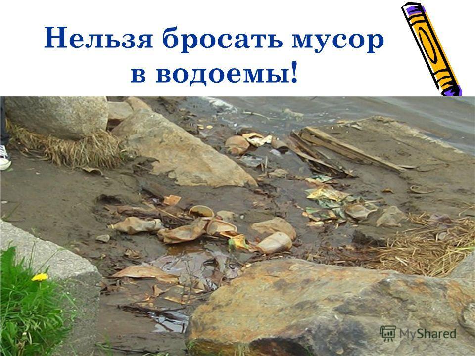 Нельзя бросать мусор в водоемы!