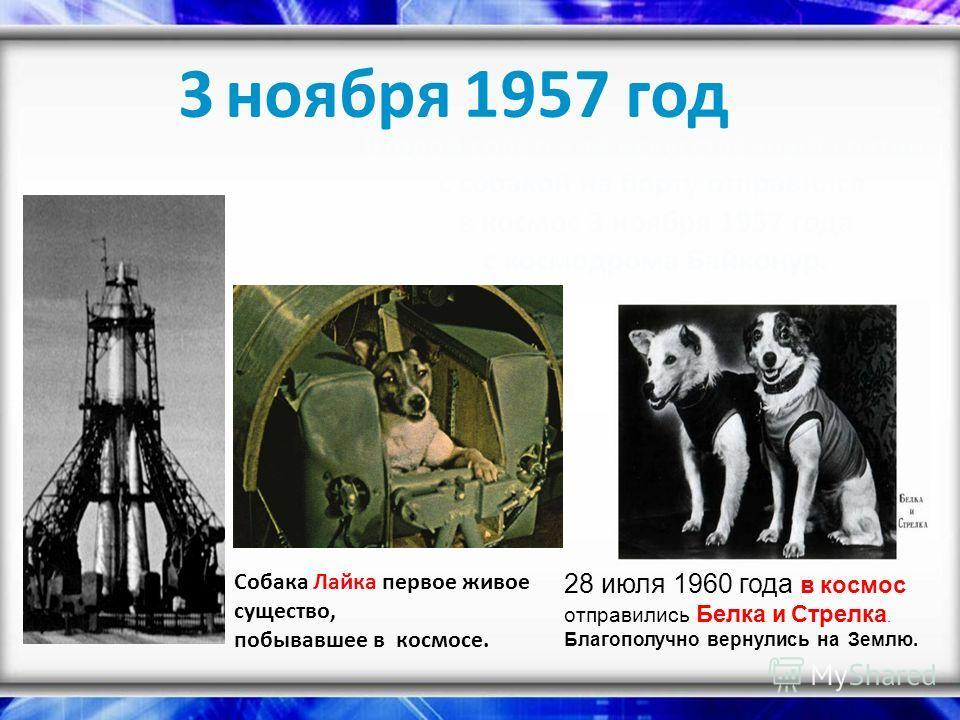 3 ноября 1957 год Второй советский искусственный спутник с собакой на борту отправился в космос 3 ноября 1957 года с космодрома Байконур. Собака Лайка первое живое существо, побывавшее в космосе. 28 июля 1960 года в космос отправились Белка и Стрелка