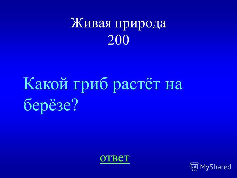 НАЗАД ВЫХОД Комар и мошкара 100