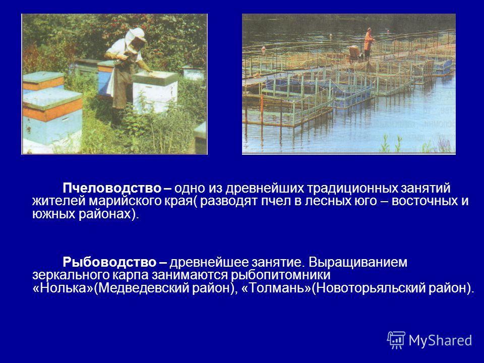 Пчеловодство – одно из древнейших традиционных занятий жителей марийского края( разводят пчел в лесных юго – восточных и южных районах). Рыбоводство – древнейшее занятие. Выращиванием зеркального карпа занимаются рыбопитомники «Нолька»(Медведевский р