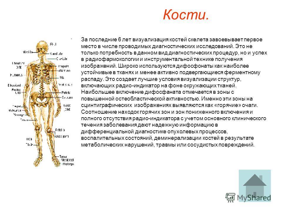 Кости. За последние 6 лет визуализация костей скелета завоевывает первое место в числе проводимых диагностических исследований. Это не только потребность в данном вид диагностических процедур, но и успех в радиофармокологии и инструментальной технике