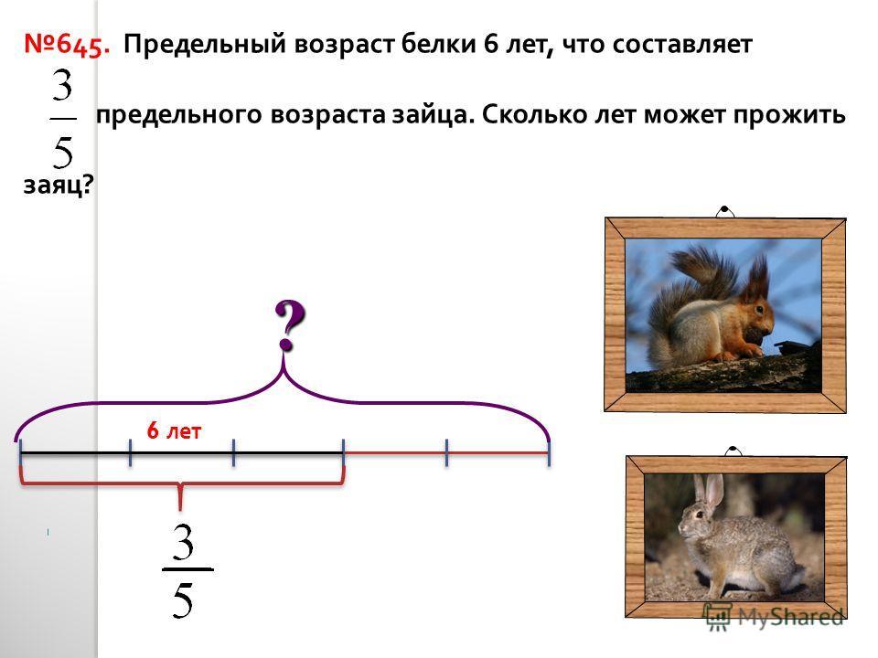 645. Предельный возраст белки 6 лет, что составляет предельного возраста зайца. Сколько лет может прожить заяц ? 6 лет ?