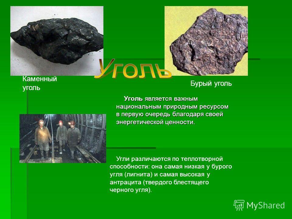 Уголь является важным национальным природным ресурсом в первую очередь благодаря своей энергетической ценности. Уголь является важным национальным природным ресурсом в первую очередь благодаря своей энергетической ценности. Каменный уголь Бурый уголь
