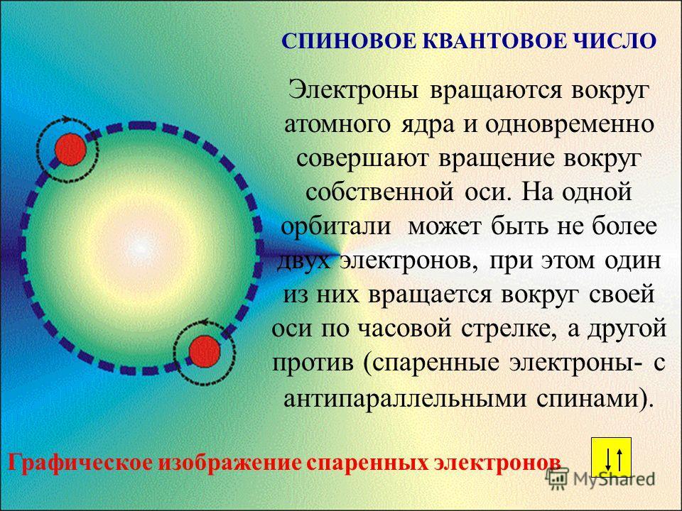 СПИНОВОЕ КВАНТОВОЕ ЧИСЛО Электроны вращаются вокруг атомного ядра и одновременно совершают вращение вокруг собственной оси. На одной орбитали может быть не более двух электронов, при этом один из них вращается вокруг своей оси по часовой стрелке, а д