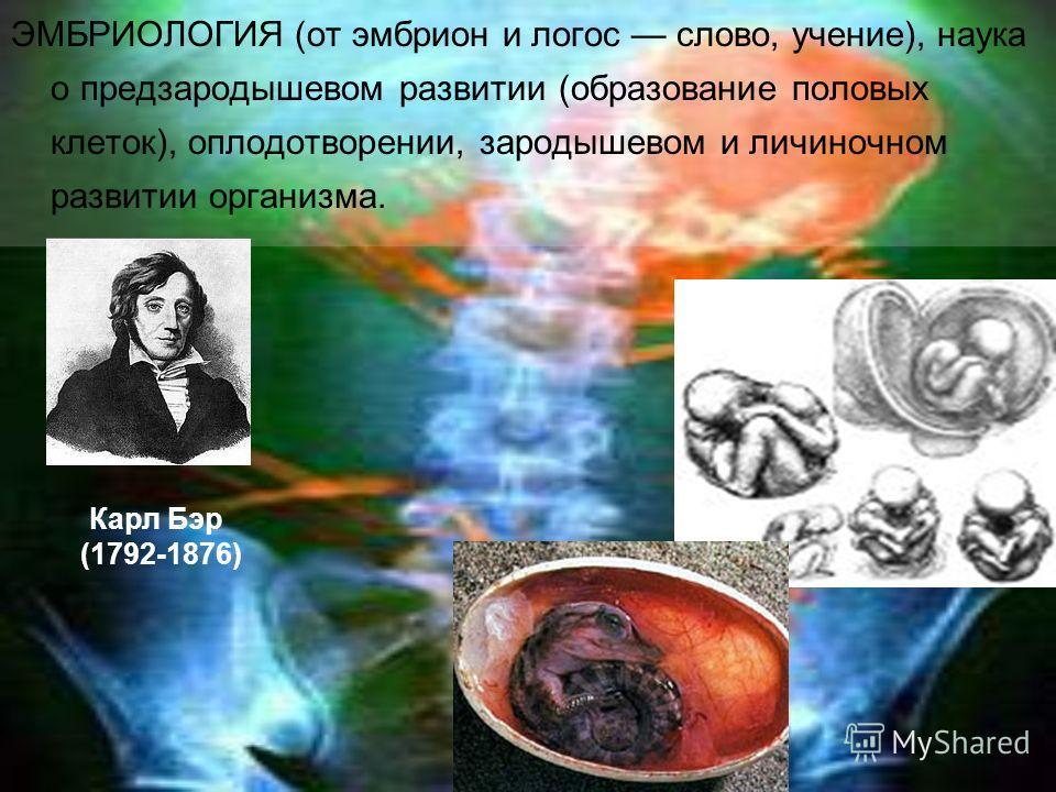 ЭМБРИОЛОГИЯ (от эмбрион и логос слово, учение), наука о предзародышевом развитии (образование половых клеток), оплодотворении, зародышевом и личиночном развитии организма. Карл Бэр (1792-1876)