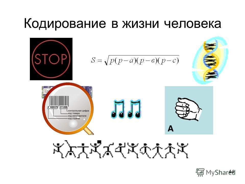 44 Кодирование в жизни человека