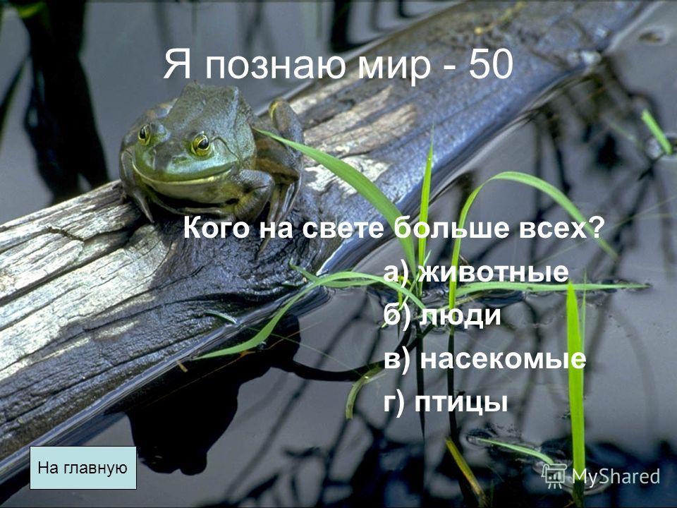 Я познаю мир - 50 Кого на свете больше всех? а) животные б) люди в) насекомые г) птицы На главную