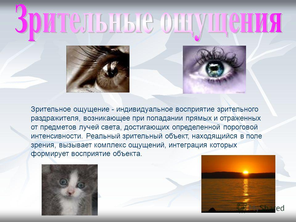 Зрительное ощущение - индивидуальное восприятие зрительного раздражителя, возникающее при попадании прямых и отраженных от предметов лучей света, достигающих определенной пороговой интенсивности. Реальный зрительный объект, находящийся в поле зрения,