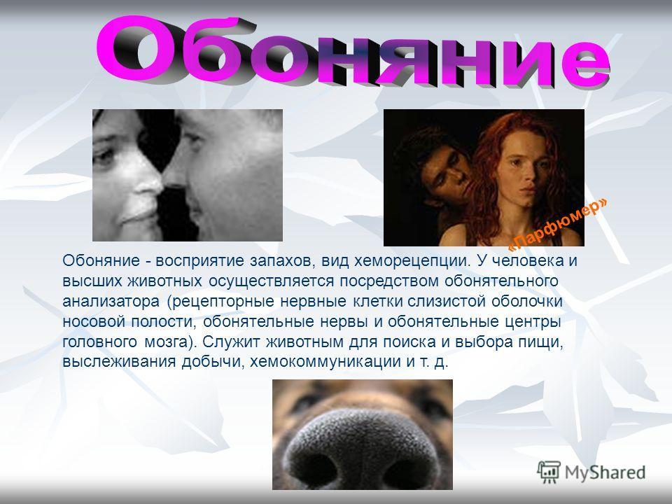 Обоняние - восприятие запахов, вид хеморецепции. У человека и высших животных осуществляется посредством обонятельного анализатора (рецепторные нервные клетки слизистой оболочки носовой полости, обонятельные нервы и обонятельные центры головного мозг