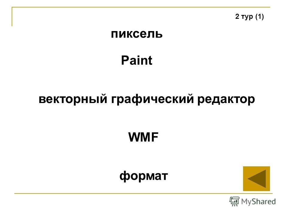 2 тур (1) пиксель векторный графический редактор WMF формат Paint