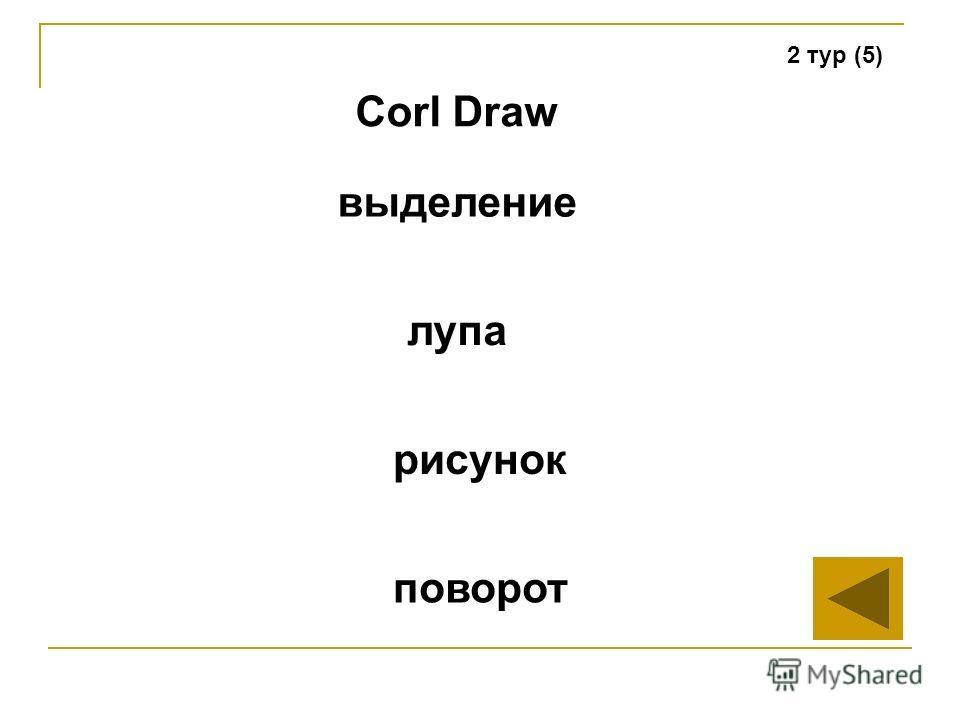 2 тур (5) Corl Draw лупа рисунок поворот выделение