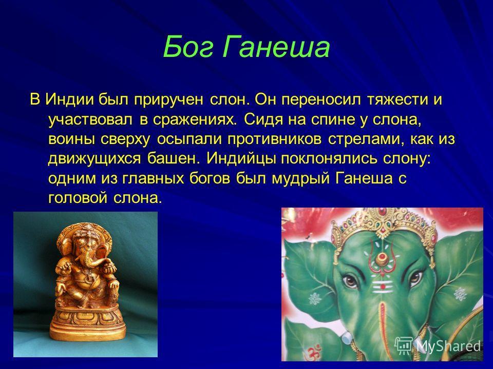 Бог Ганеша В Индии был приручен слон. Он переносил тяжести и участвовал в сражениях. Сидя на спине у слона, воины сверху осыпали противников стрелами, как из движущихся башен. Индийцы поклонялись слону: одним из главных богов был мудрый Ганеша с голо