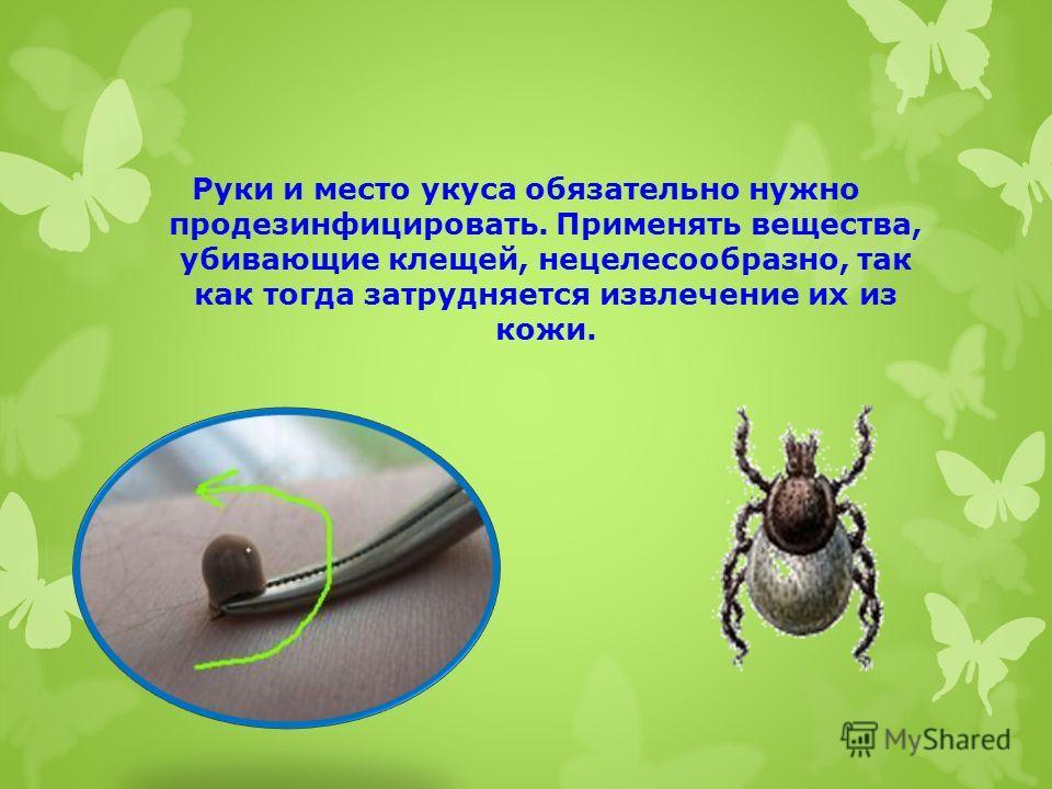 Руки и место укуса обязательно нужно продезинфицировать. Применять вещества, убивающие клещей, нецелесообразно, так как тогда затрудняется извлечение их из кожи.