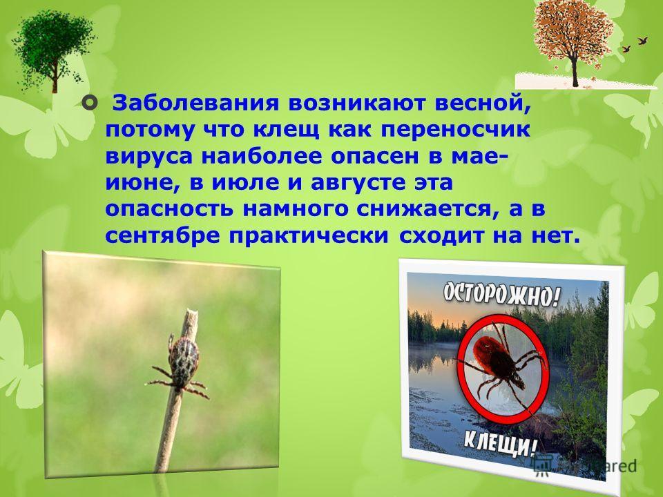 Заболевания возникают весной, потому что клещ как переносчик вируса наиболее опасен в мае- июне, в июле и августе эта опасность намного снижается, а в сентябре практически сходит на нет.