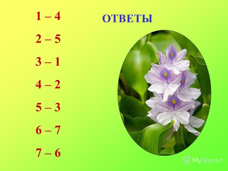 ОТВЕТЫ 1 – 4 2 – 5 3 – 1 4 – 2 5 – 3 6 – 7 7 – 6
