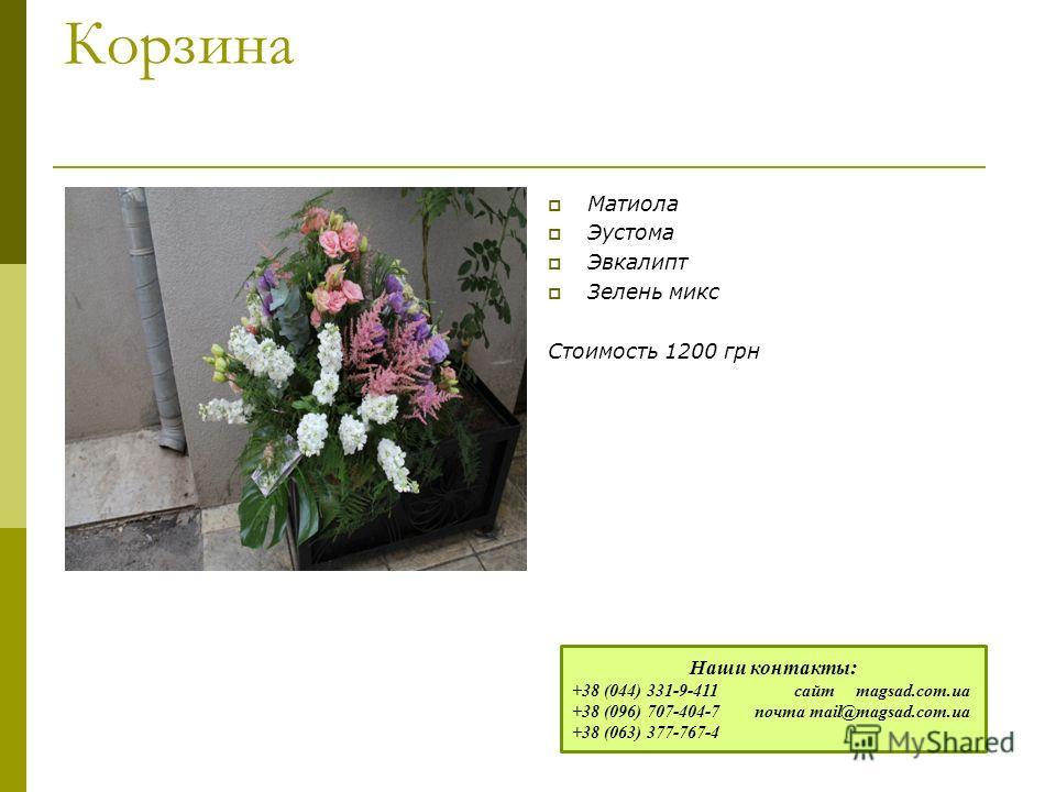 Корзина Матиола Эустома Эвкалипт Зелень микс Стоимость 1200 грн Наши контакты: +38 (044) 331-9-411 сайт magsad.com.ua +38 (096) 707-404-7 почта mail@magsad.com.ua +38 (063) 377-767-4