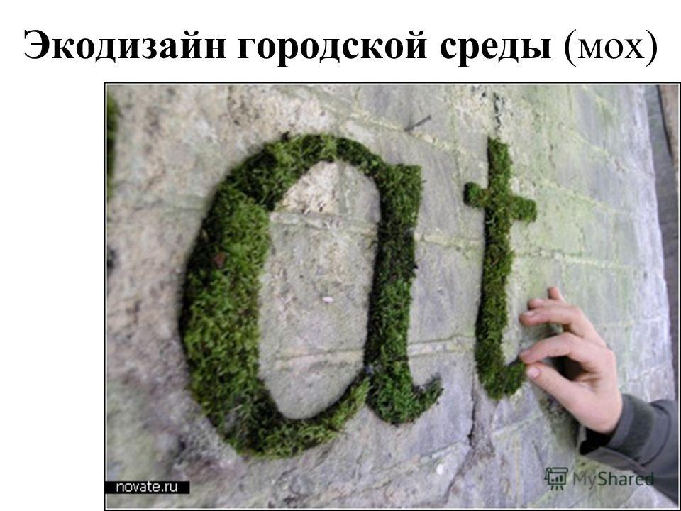 Экодизайн городской среды (мох)
