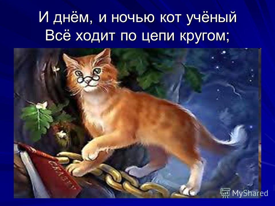 И днём, и ночью кот учёный Всё ходит по цепи кругом;