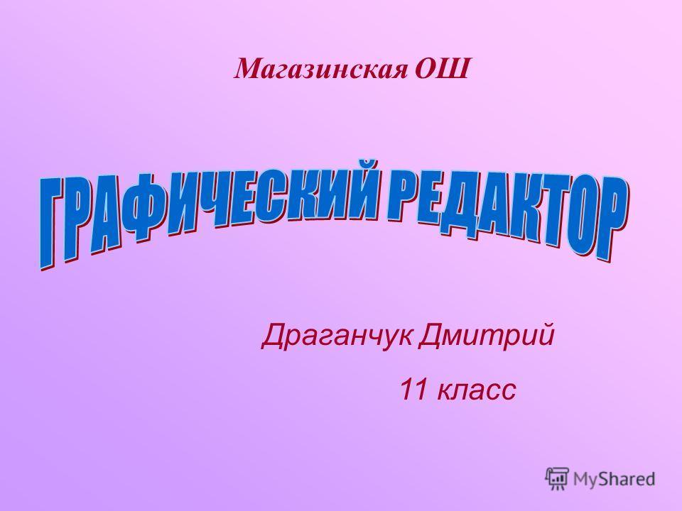 Магазинская ОШ Драганчук Дмитрий 11 класс
