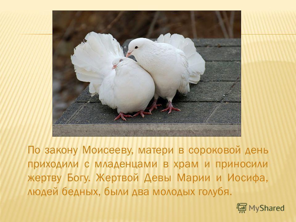 По закону Моисееву, матери в сороковой день приходили с младенцами в храм и приносили жертву Богу. Жертвой Девы Марии и Иосифа, людей бедных, были два молодых голубя.