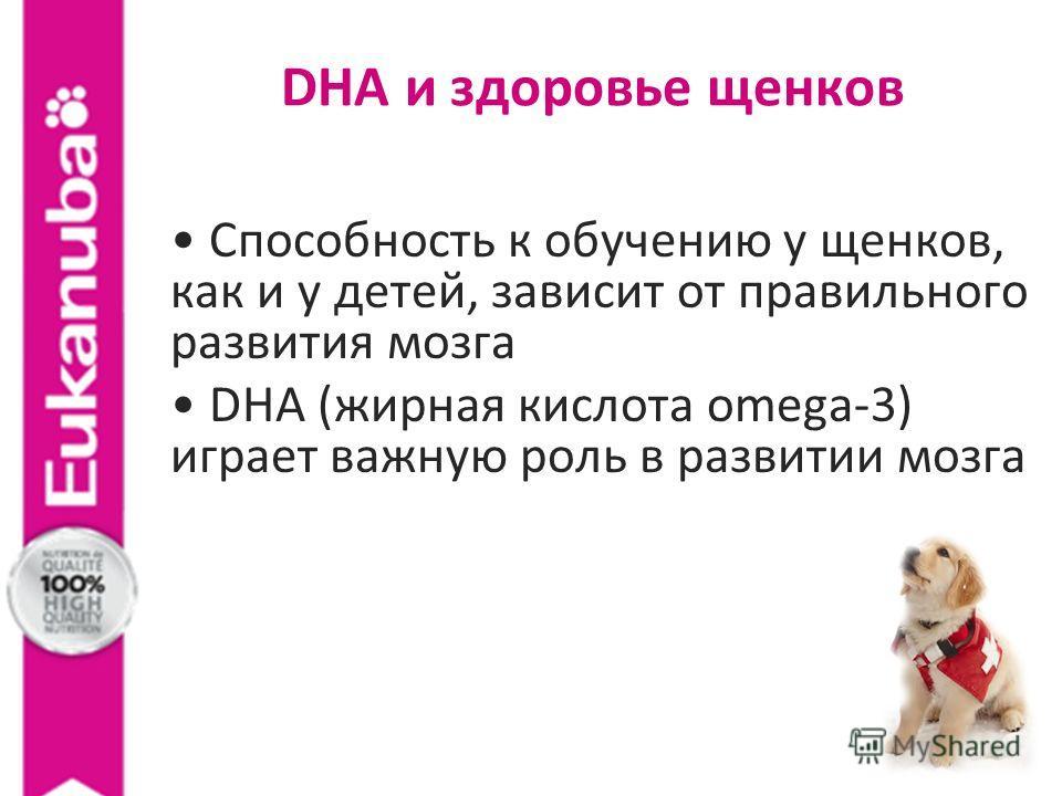 Способность к обучению у щенков, как и у детей, зависит от правильного развития мозга DHA (жирная кислота omega-3) играет важную роль в развитии мозга DHA и здоровье щенков