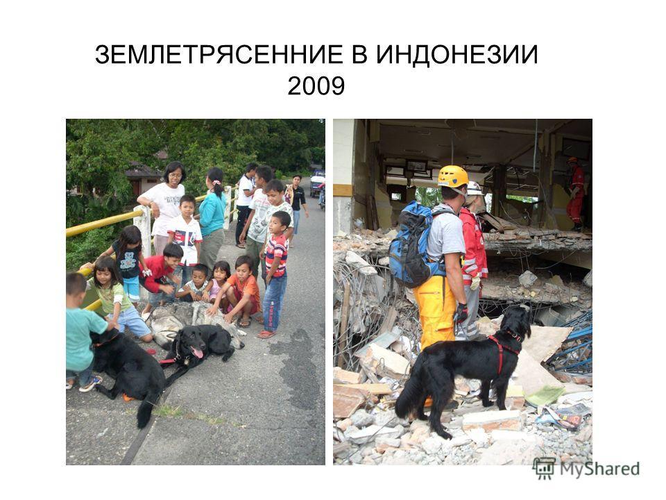 ЗЕМЛЕТРЯСЕННИЕ В ИНДОНЕЗИИ 2009