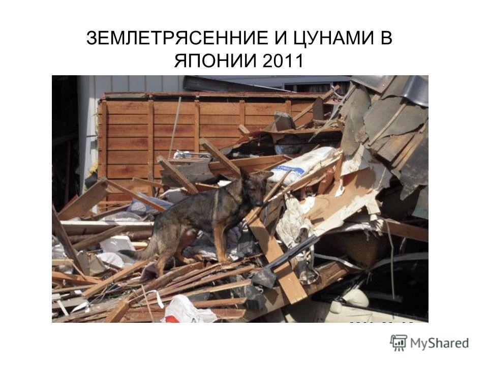 ЗЕМЛЕТРЯСЕННИЕ И ЦУНАМИ В ЯПОНИИ 2011