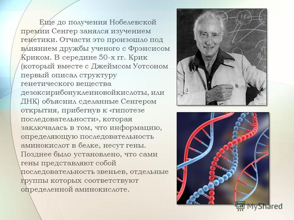 Еще до получения Нобелевской премии Сенгер занялся изучением генетики. Отчасти это произошло под влиянием дружбы ученого с Фрэнсисом Криком. В середине 50-х гг. Крик (который вместе с Джеймсом Уотсоном первый описал структуру генетического вещества д
