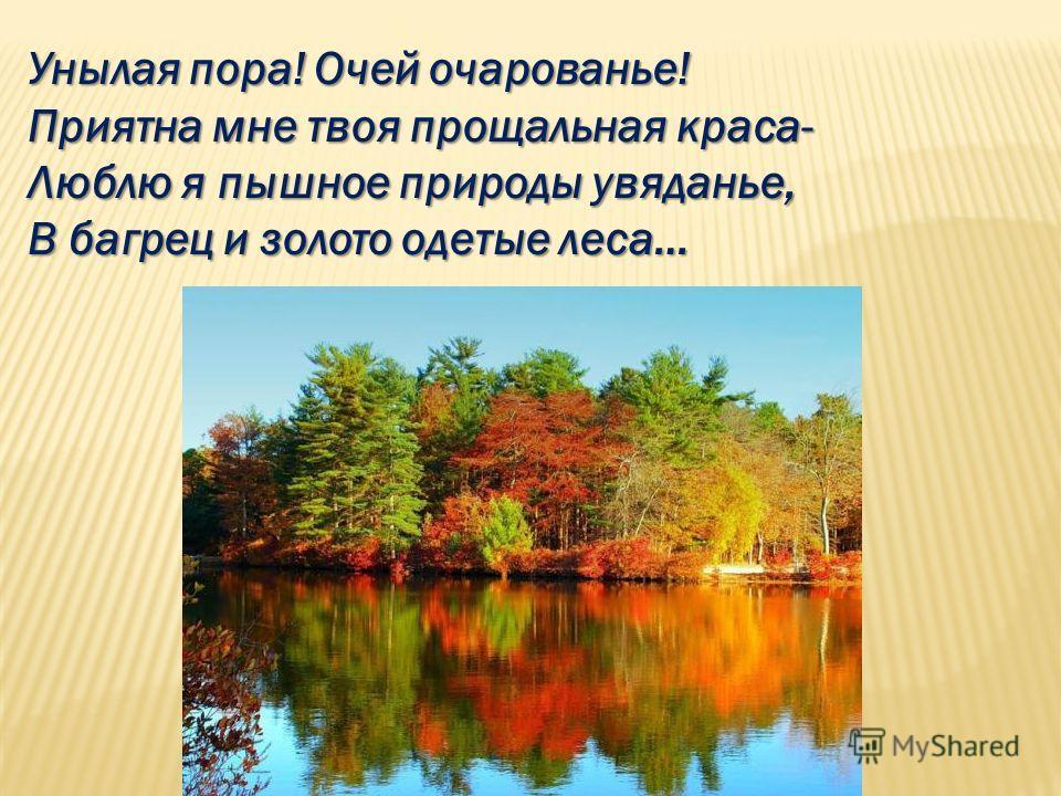 Унылая пора! Очей очарованье! Приятна мне твоя прощальная краса- Люблю я пышное природы увяданье, В багрец и золото одетые леса…
