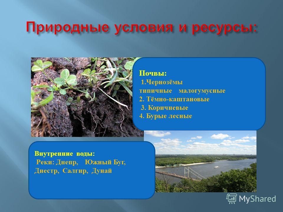 Почвы: 1.Чернозёмы типичные малогумусные 2. Тёмно-каштановые 3. Коричневые 4. Бурые лесные Внутренние воды: Реки: Днепр, Южный Буг, Днестр, Салгир, Дунай