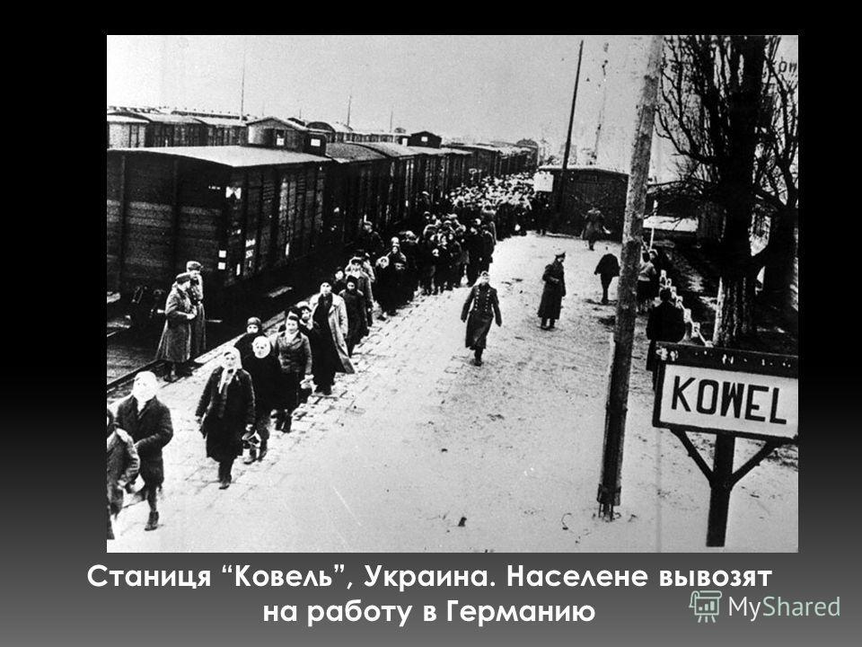 Станиця Ковель, Украина. Населене вывозят на работу в Германию