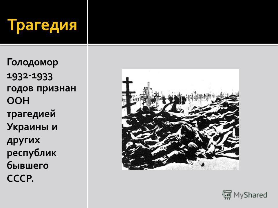 Трагедия Голодомор 1932-1933 годов признан ООН трагедией Украины и других республик бывшего СССР.