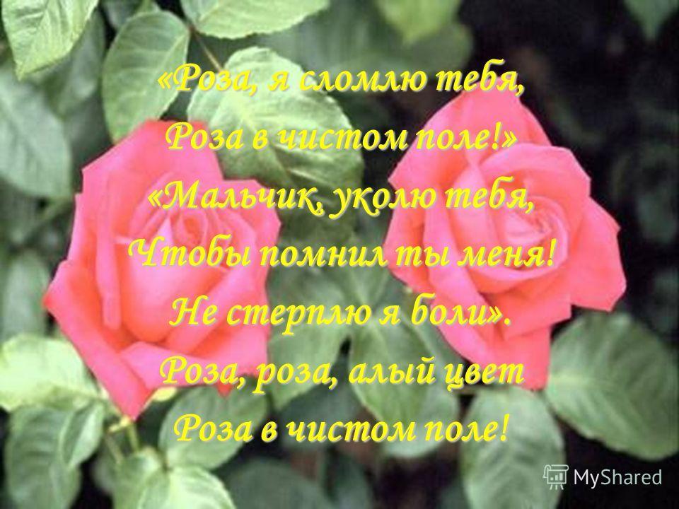 « Роза, я сломлю тебя, Роза в чистом поле!» «Мальчик, уколю тебя, Чтобы помнил ты меня! Не стерплю я боли». Роза, роза, алый цвет Роза в чистом поле!