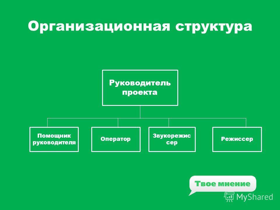 Организационная структура Руководитель проекта Помощник руководителя Оператор Звукорежис сер Режиссер
