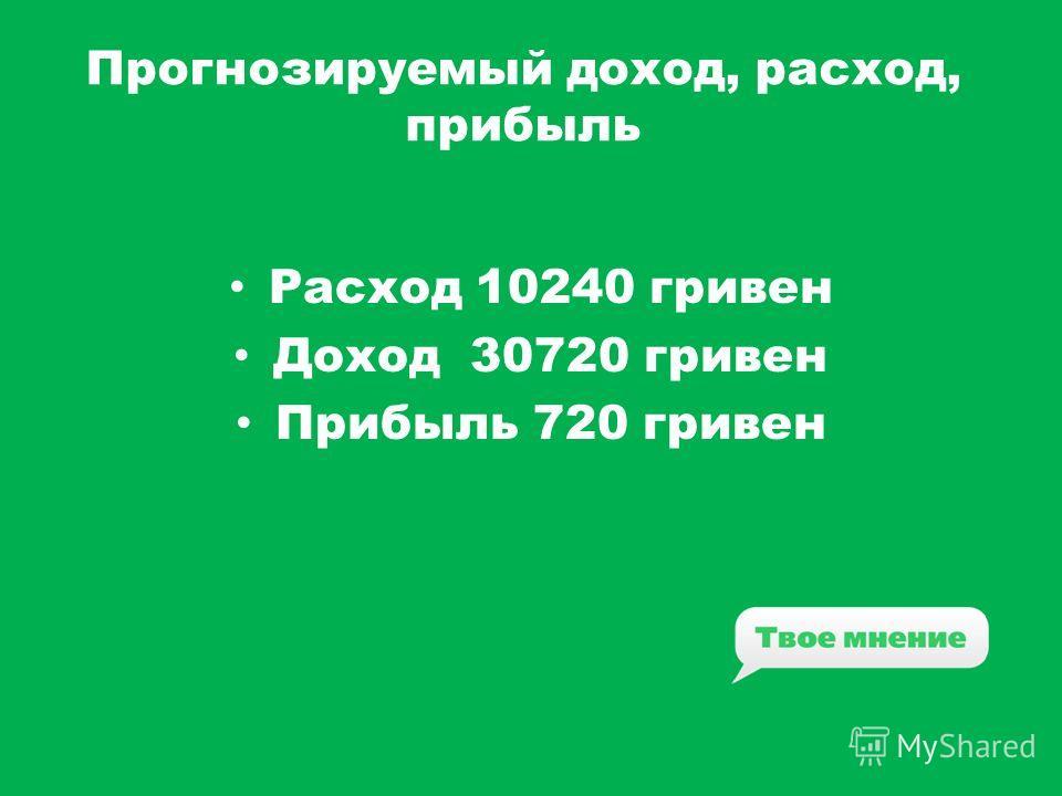 Прогнозируемый доход, расход, прибыль Расход 10240 гривен Доход 30720 гривен Прибыль 720 гривен