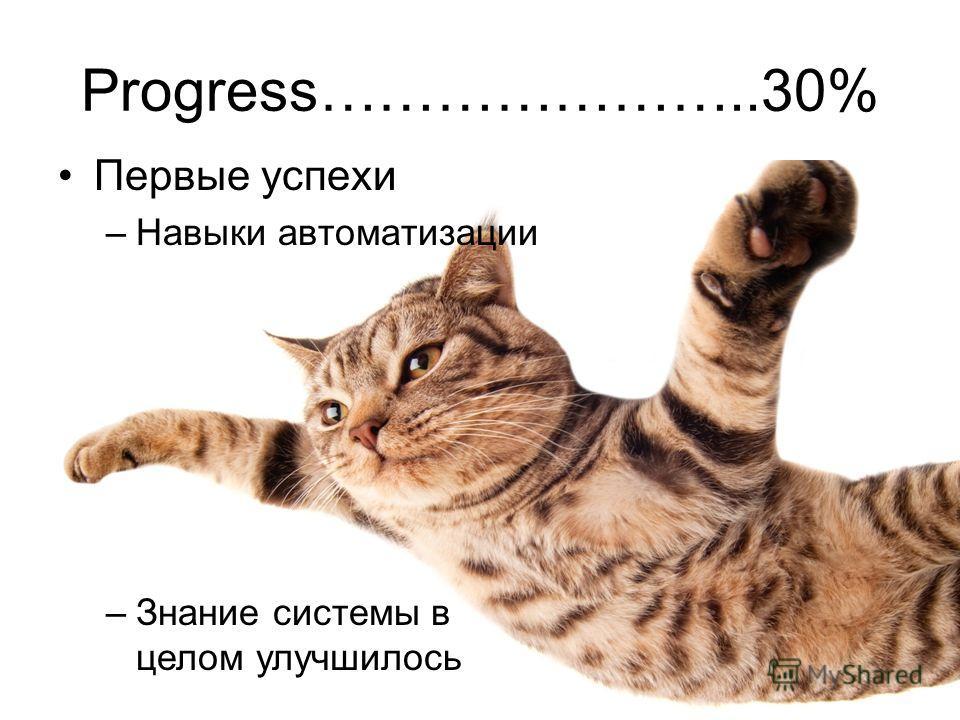 Progress…………………..30% Первые успехи –Навыки автоматизации –Знание системы в целом улучшилось