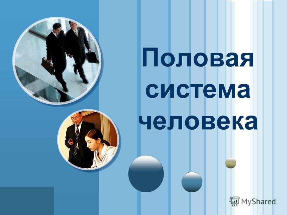 www.themegallery.com LOGO Половая система человека