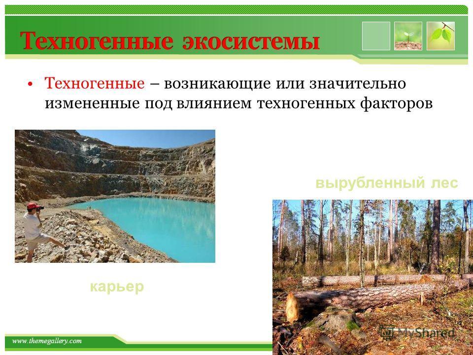 www.themegallery.com Техногенные – возникающие или значительно измененные под влиянием техногенных факторов вырубленный лес карьер