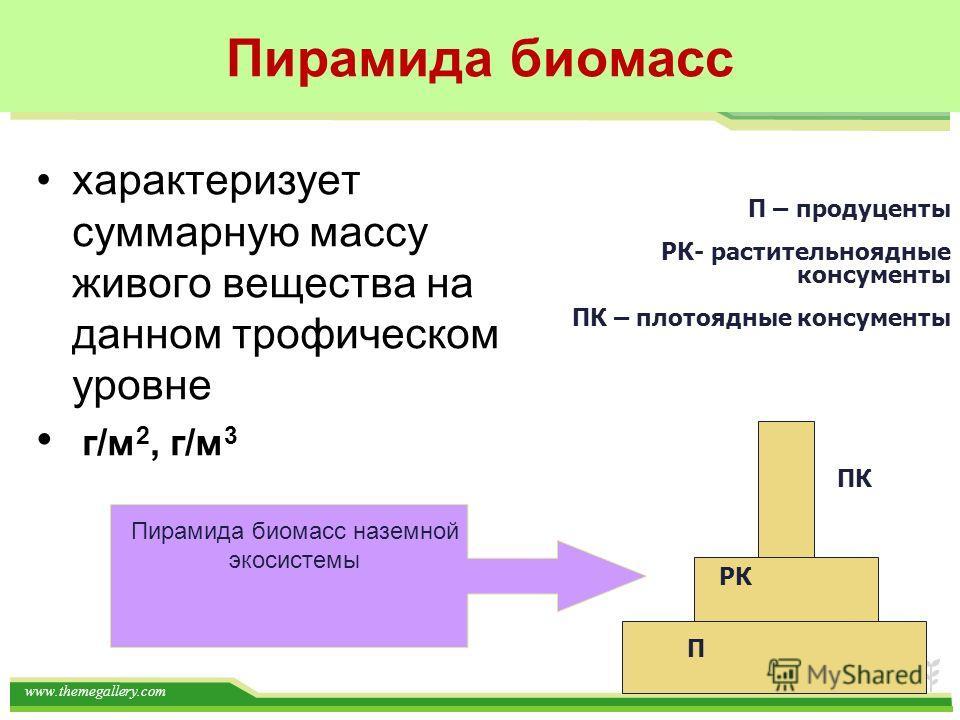www.themegallery.com Пирамида биомасс характеризует суммарную массу живого вещества на данном трофическом уровне г/м 2, г/м 3 П – продуценты РК- растительноядные консументы ПК – плотоядные консументы П РК ПК Пирамида биомасс наземной экосистемы