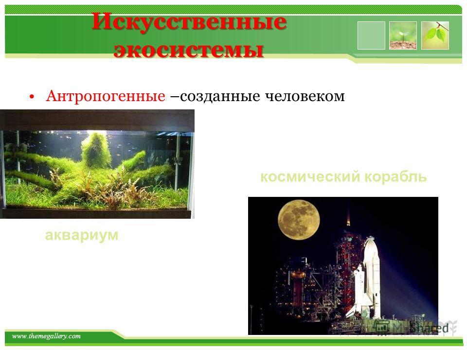 Искусственные экосистемы Антропогенные –созданные человеком аквариум космический корабль