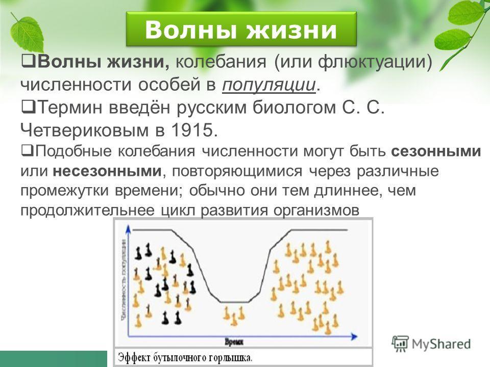 Волны жизни Волны жизни, колебания (или флюктуации) численности особей в популяции. Термин введён русским биологом С. С. Четвериковым в 1915. Подобные колебания численности могут быть сезонными или несезонными, повторяющимися через различные промежут