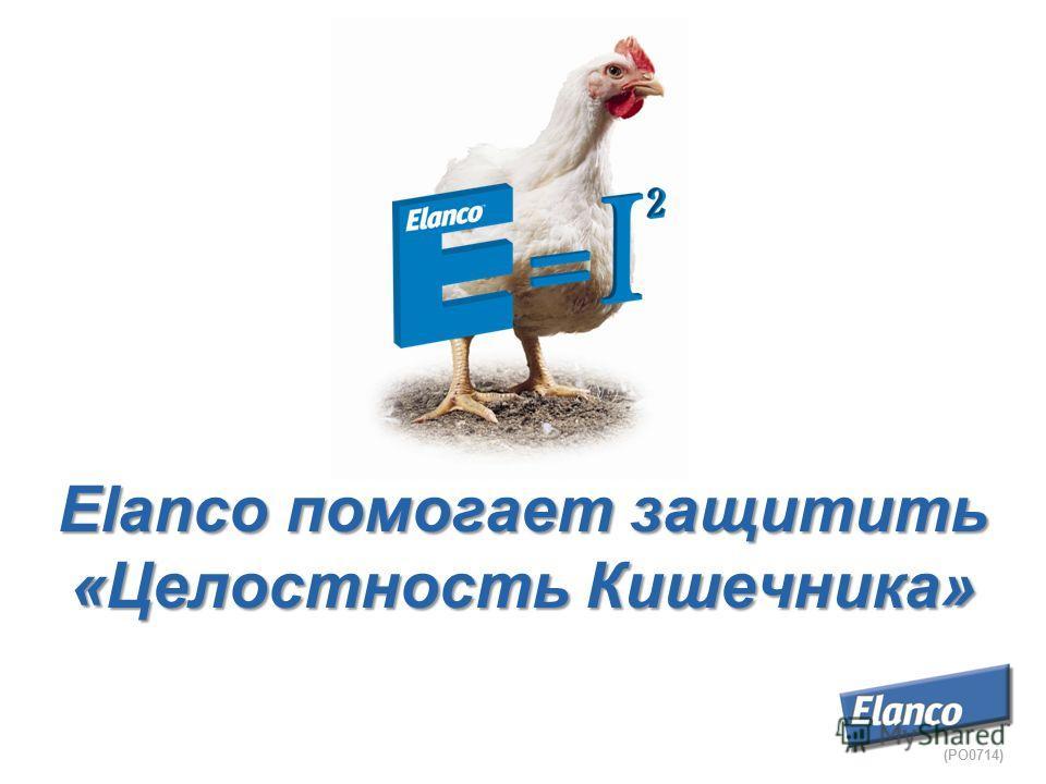 Elanco помогает защитить «Целостность Кишечника» (PO0714)