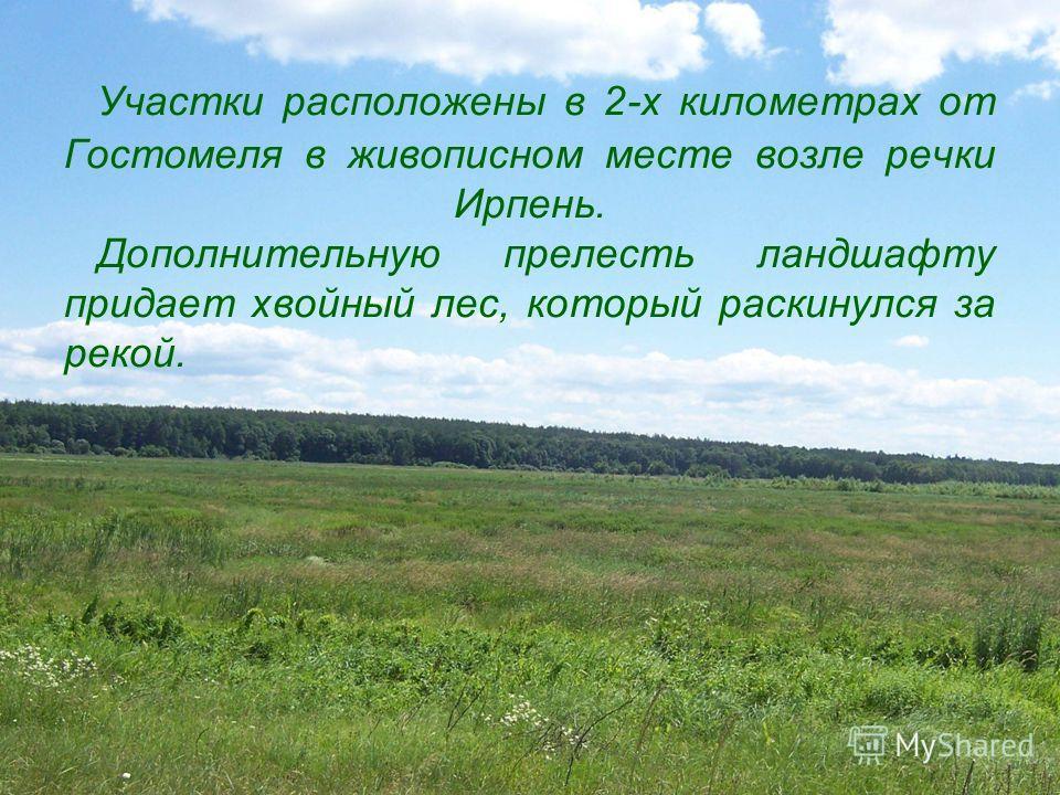 Участки расположены в 2-х километрах от Гостомеля в живописном месте возле речки Ирпень. Дополнительную прелесть ландшафту придает хвойный лес, который раскинулся за рекой.